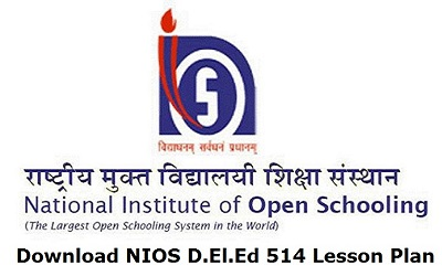 Download NIOS D.El.Ed 514 Lesson Plan
